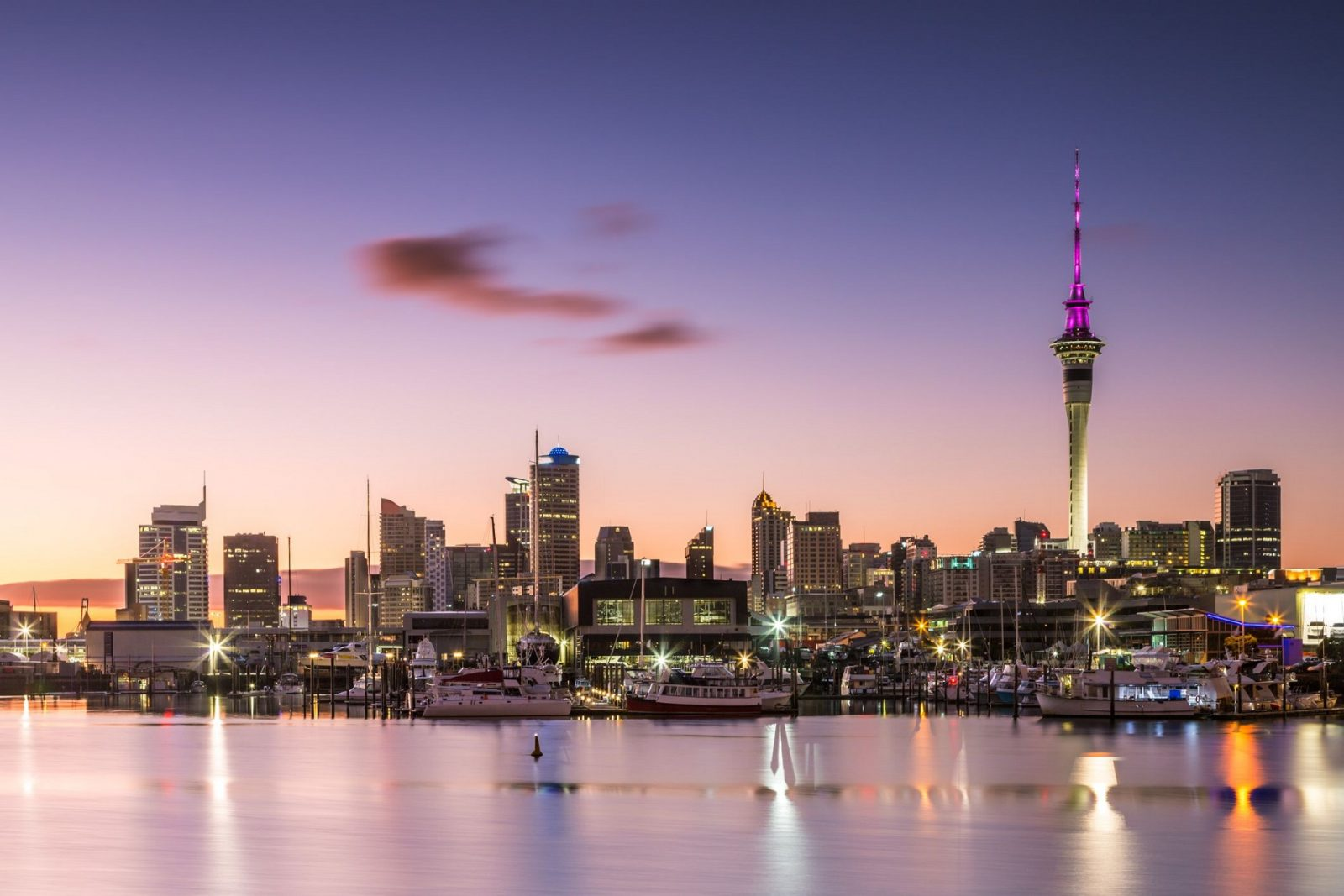 Shops You Should Visit While In Auckland